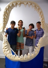 Students showcase their invention, Shark-X.