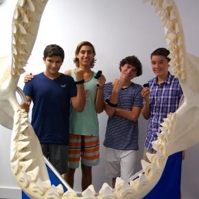 Students to Test Shark-X Invention at Sandoway House NatureCenter