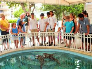 Grandview students test and present Shark-X product at Sandoway House Nature Center in Delray Beach.