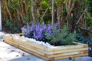 Part of the project involved building a planter box to house plants to naturally repel mosquitoes.